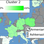 Bauchet European clusters, Cluster 2 - Wikipedia