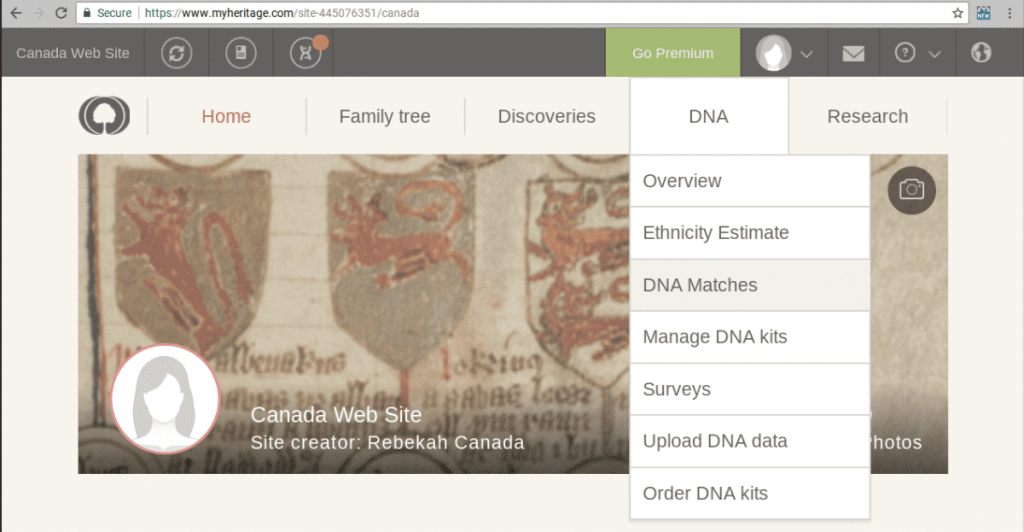 MyHeritage-Chromosome-Browser-2