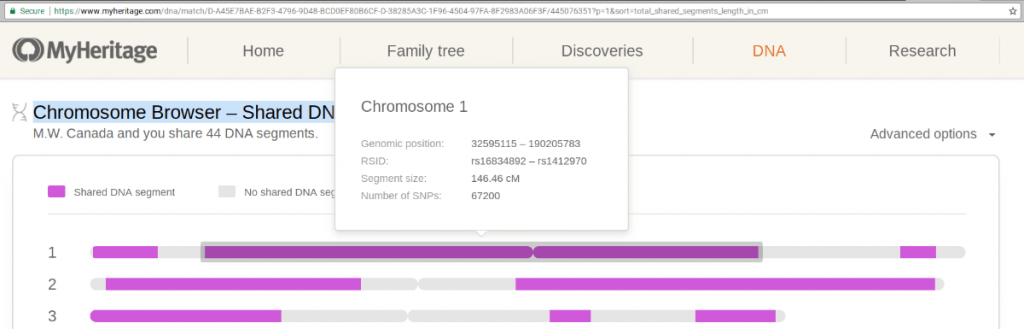 MyHeritage Chromosome Browser Segment Details