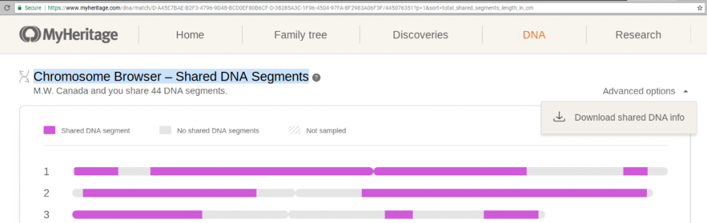 MyHeritage Chromosome Browser Download Segment Information